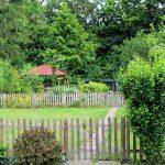 Garten3_BK_MV_2119